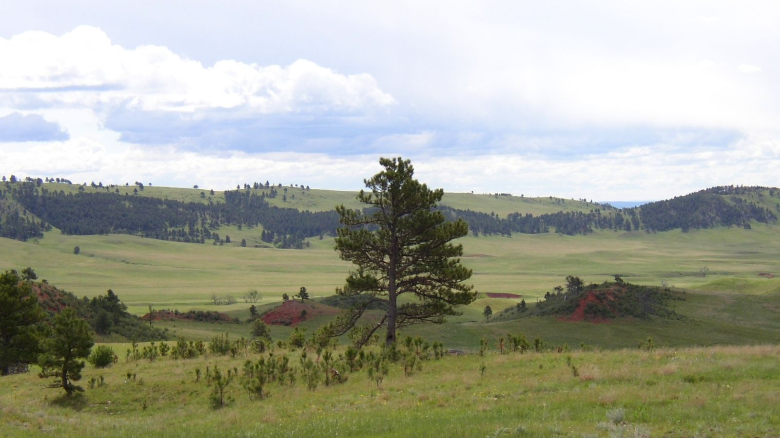 6 Factors to Consider When Determining What Land To Buy