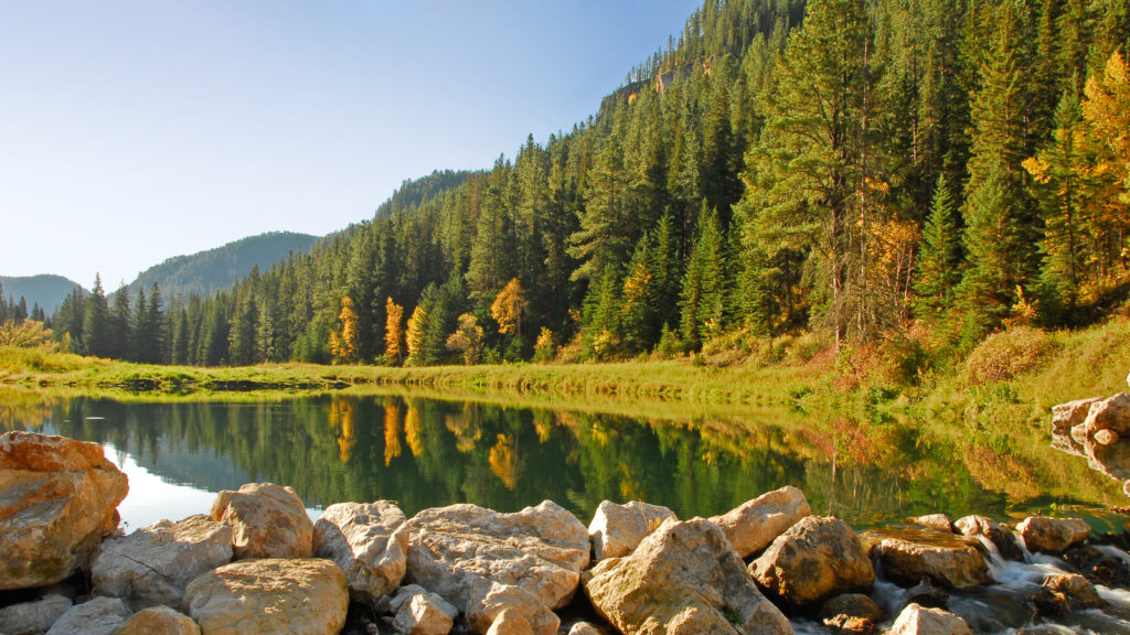 Be sure to devote time to exploring Spearfish Canyon when you're enjoying the Northern Black Hills.